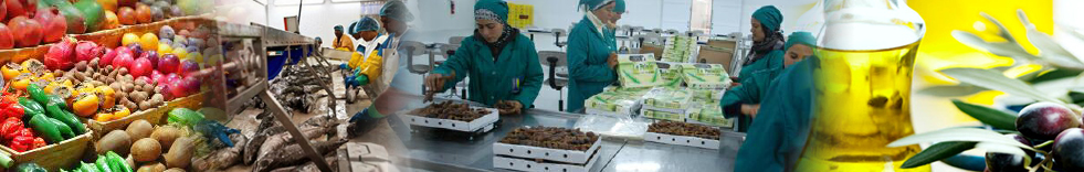 The food industry: lighthouse Tunisian Industry Sector